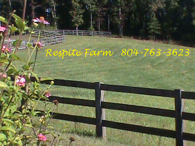 Contact-Us-Respite-Farm-Sit