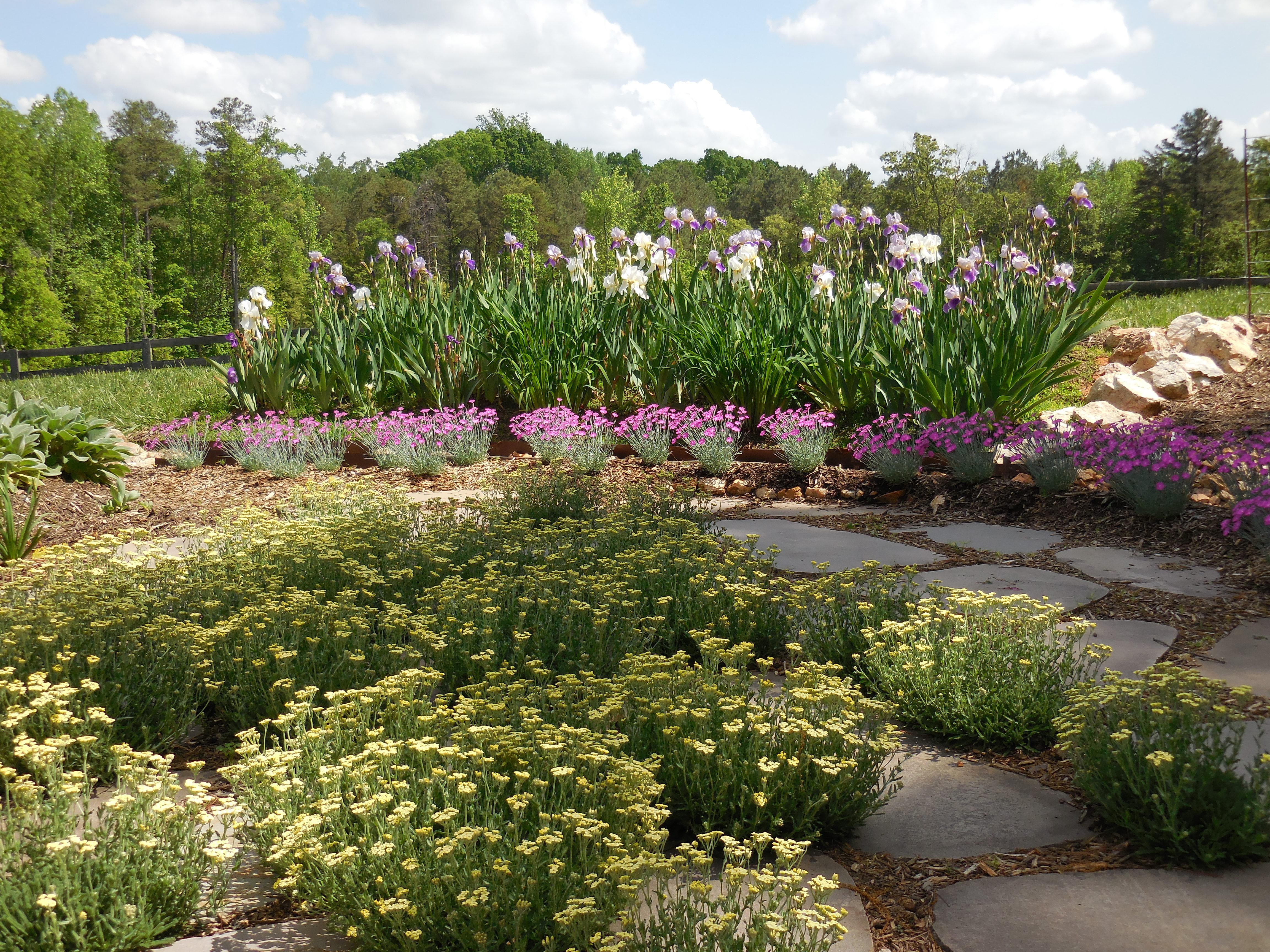 2015 May West Garden