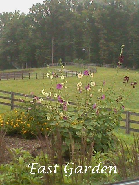 East-Garden---Pasture